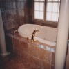 luxury bathroom remodeling